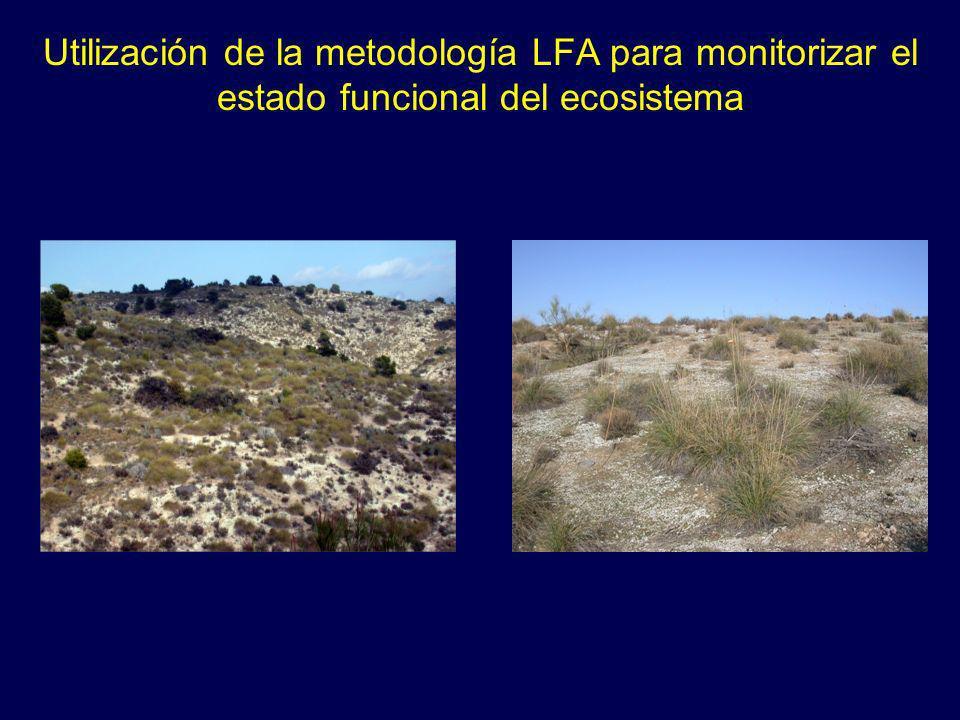 Utilización de la metodología LFA para monitorizar el estado funcional del ecosistema