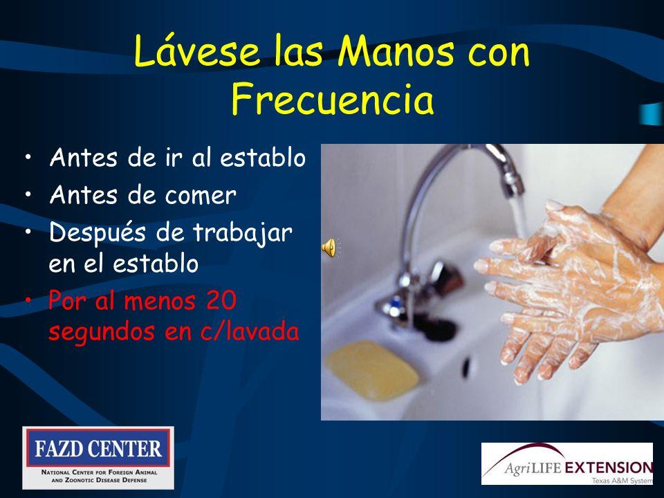 Desinfectantes Comunes Nolvasan solución Clarasol –1 parte de blanqueador:10 partes de agua Clorhexidina