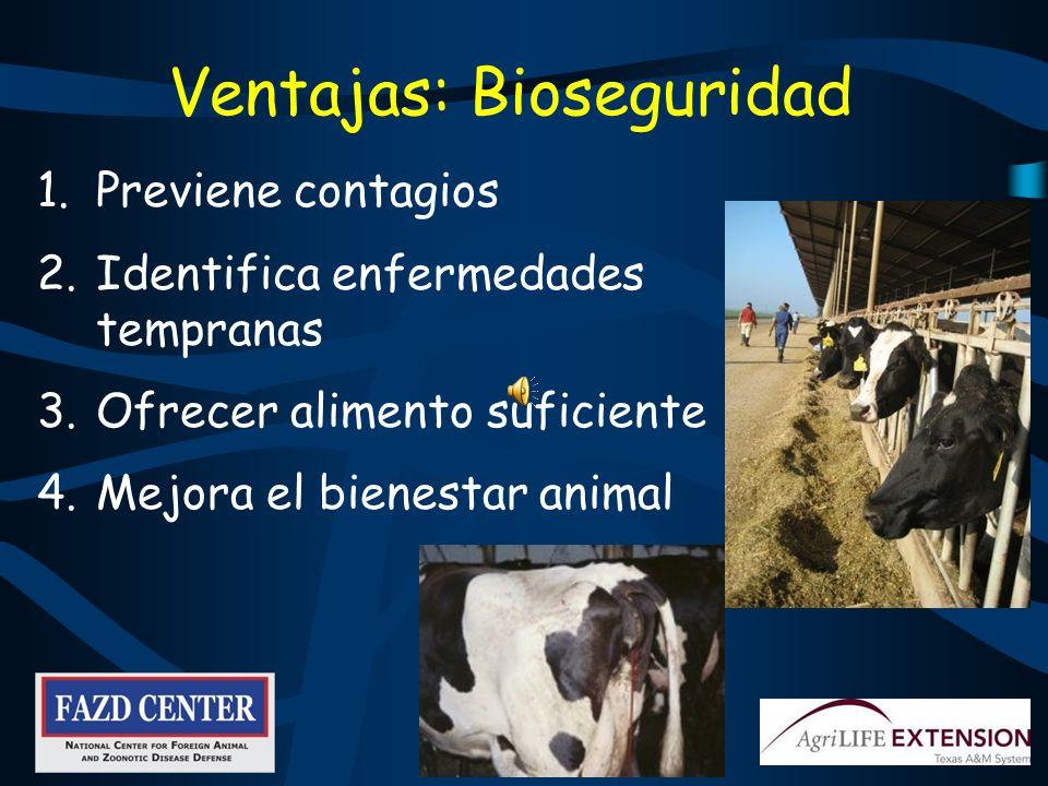 Ventajas: Bioseguridad 1.Previene contagios 2.Identifica enfermedades tempranas 3.Ofrecer alimento suficiente 4.Mejora el bienestar animal
