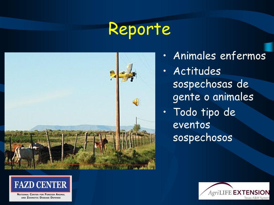 Reparación de cercos Aleje Toda Clase de Animales de los Corrales