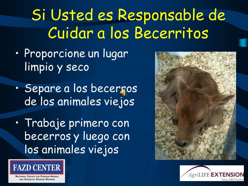 Los Procedimientos Varían Según el Área de Producción Proporcione un ambiente limpio y con bajo estrés El estrés imposibilita al animal a defenderse c