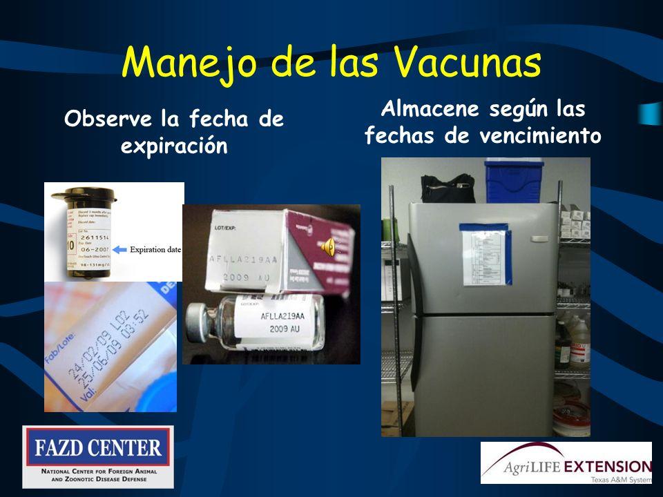 Programas de Vacunación Previenen ciertas enfermedades Si estas se presentan siga los procedimientos indicados por el dueño o el veterinario