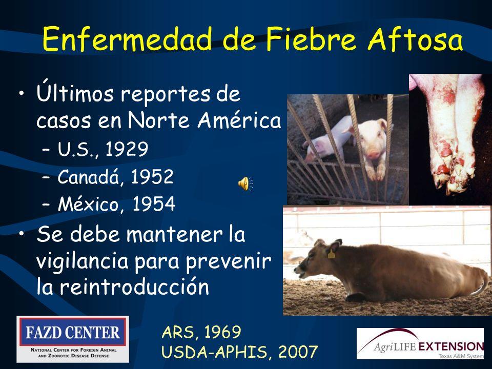 Observe Más Allá de los Síntomas Típicos Un viaje internacional aumenta el riesgo de traer enfermedades en los animales del extranjero –Por ejemplo: F