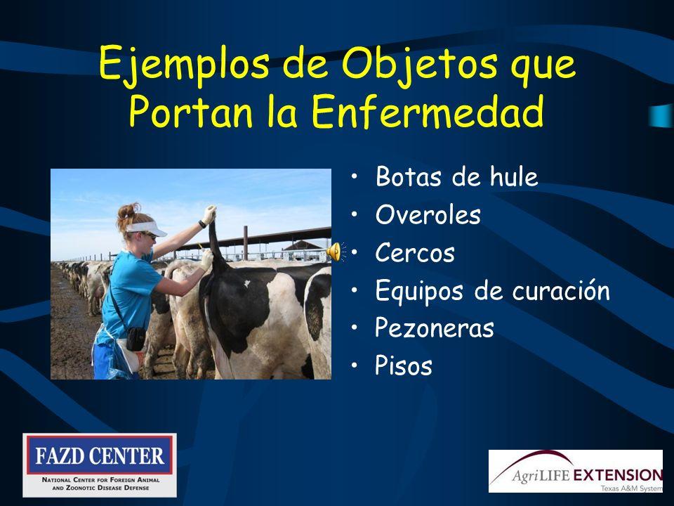 La Practica de la Bioseguridad es su Responsabilidad Mantiene sanos a los animales de la granja donde usted trabaja Reduce el riesgo de llevar enfermedades nuevas a casa Reduce el número de animales enfermos Ayuda a mantener su TRABAJO!