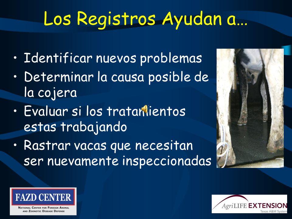 Registros Datos ID de la vaca Síntomas Diagnostico Tratamiento