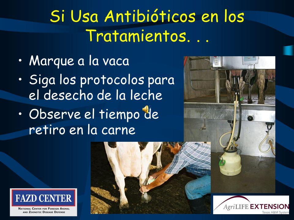 Los Registros Ayudan a… Identificar nuevos problemas Determinar la causa posible de la cojera Evaluar si los tratamientos estas trabajando Rastrar vacas que necesitan ser nuevamente inspeccionadas
