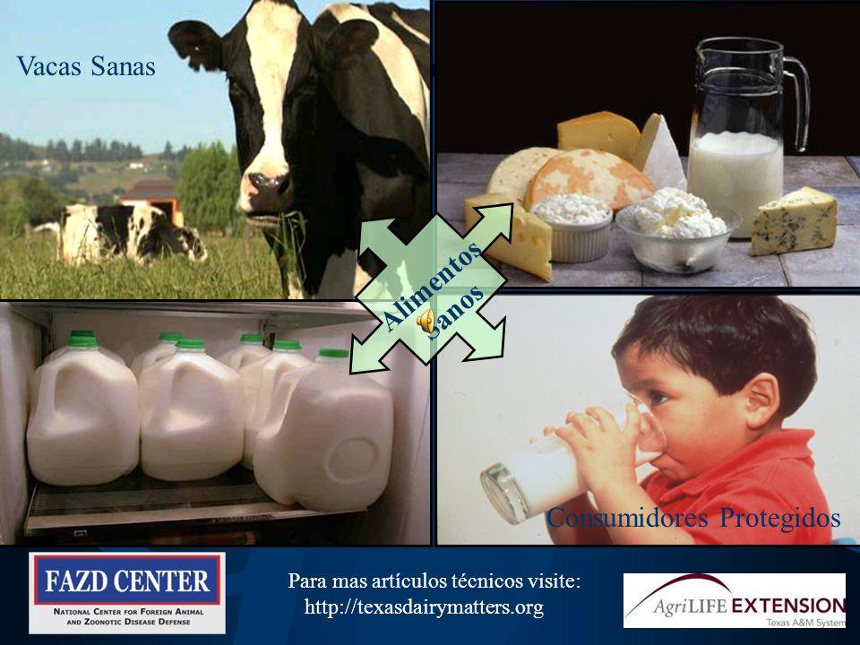 La Practica de la Bioseguridad es su Responsabilidad Mantiene sanos a los animales de la granja donde usted trabaja Reduce el riesgo de llevar enferme