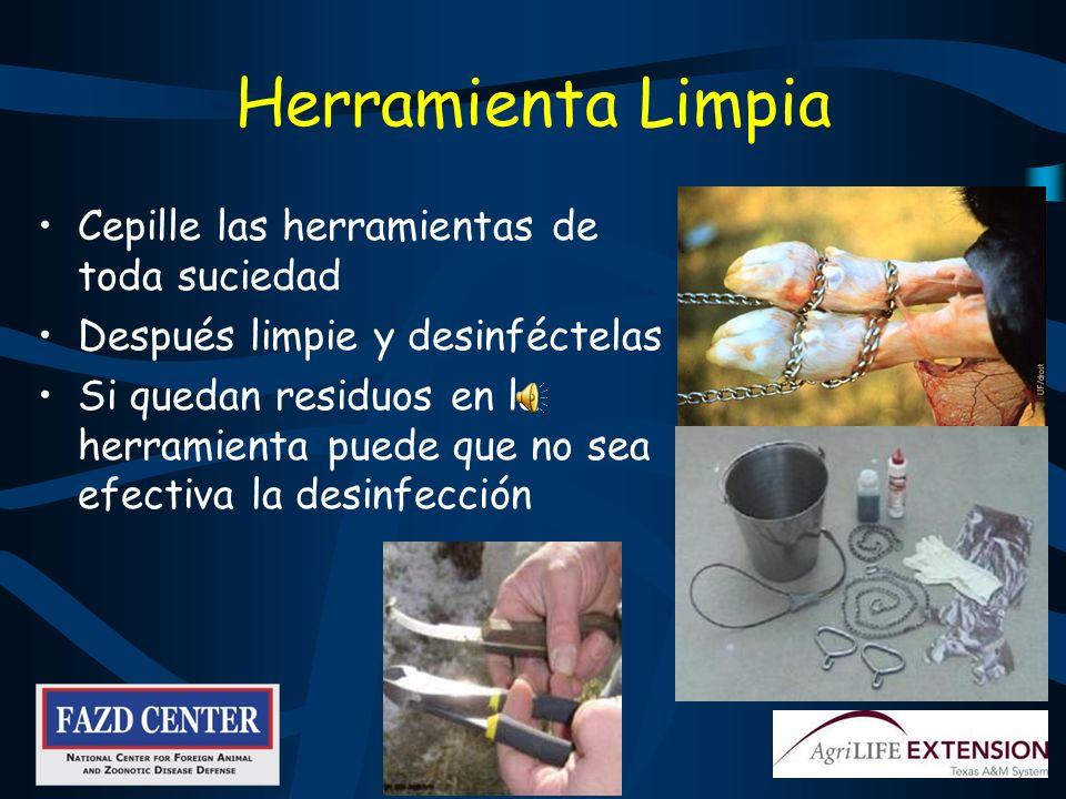 Herramienta Limpia Cepille las herramientas de toda suciedad Después limpie y desinféctelas Si quedan residuos en la herramienta puede que no sea efectiva la desinfección