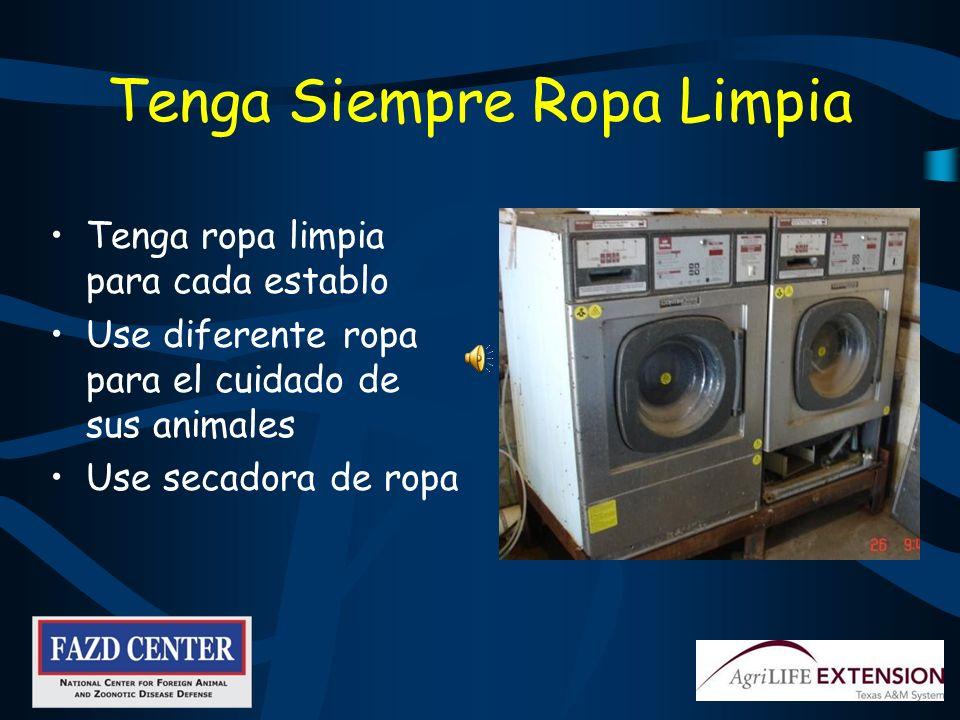 Laundromat photo Tenga Siempre Ropa Limpia Tenga ropa limpia para cada establo Use diferente ropa para el cuidado de sus animales Use secadora de ropa