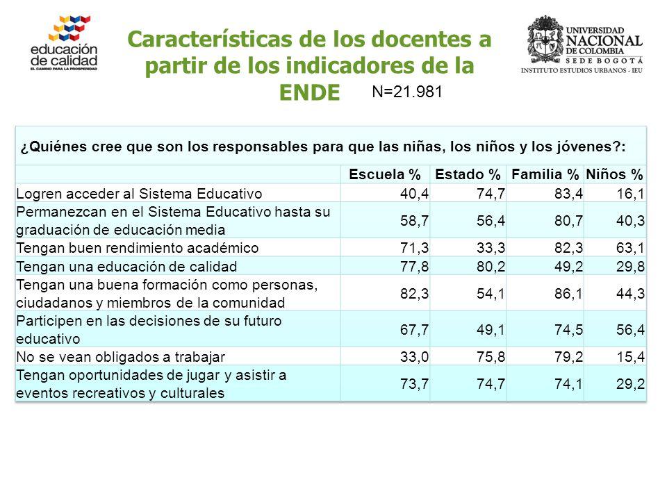 Características de los docentes a partir de los indicadores de la ENDE N=21.981