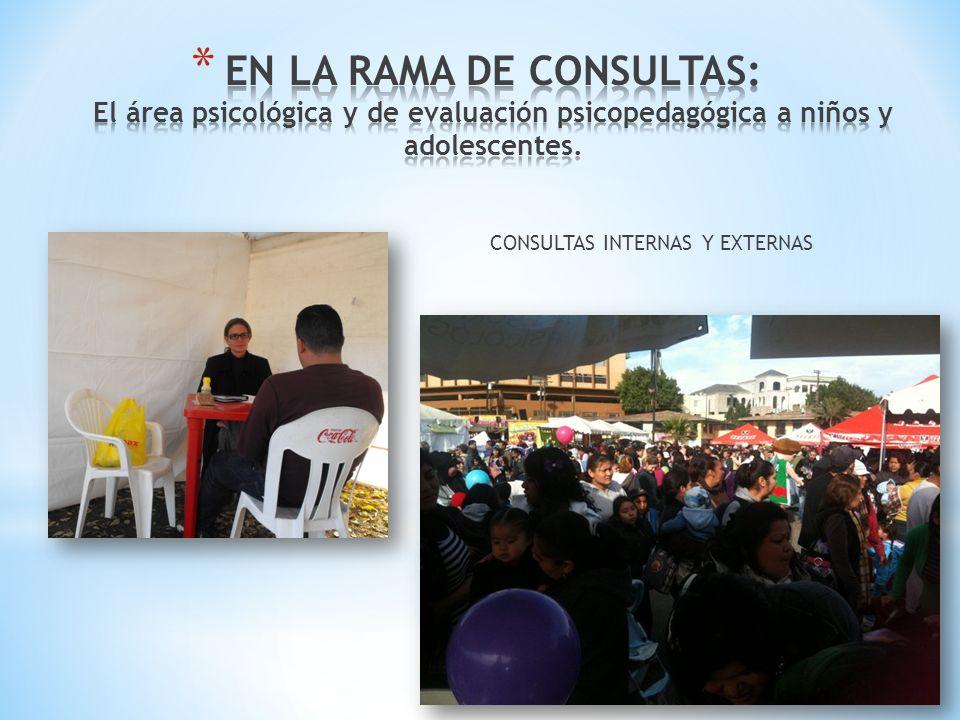 CONSULTAS INTERNAS Y EXTERNAS