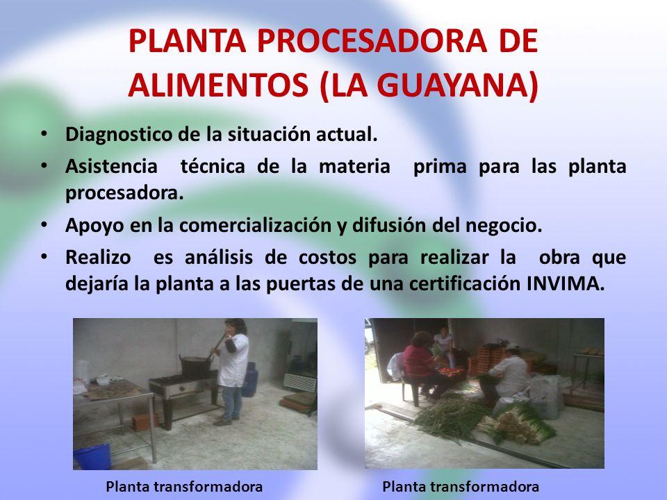 PLANTA PROCESADORA DE ALIMENTOS (LA GUAYANA) Diagnostico de la situación actual. Asistencia técnica de la materia prima para las planta procesadora. A
