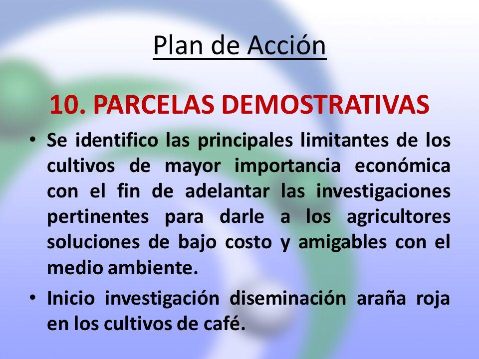 Plan de Acción 10. PARCELAS DEMOSTRATIVAS Se identifico las principales limitantes de los cultivos de mayor importancia económica con el fin de adelan