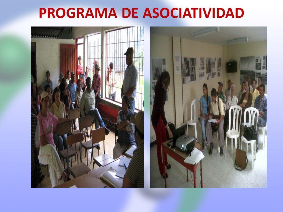 PROGRAMA DE ASOCIATIVIDAD