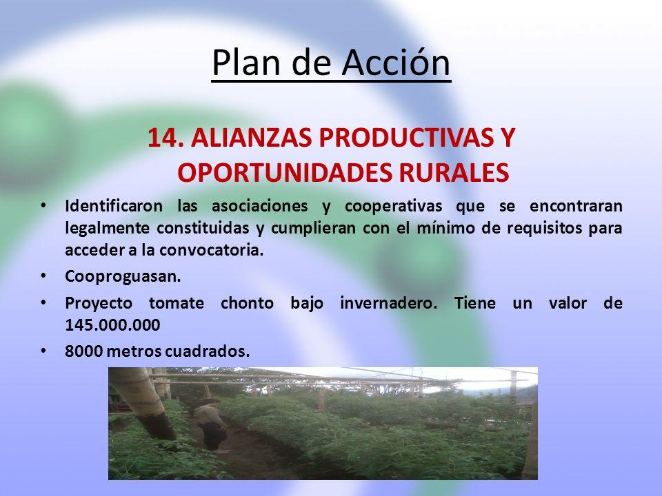 Plan de Acción 14. ALIANZAS PRODUCTIVAS Y OPORTUNIDADES RURALES Identificaron las asociaciones y cooperativas que se encontraran legalmente constituid