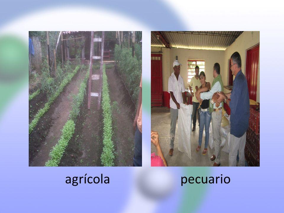 Plan de Acción 13.DISTRITO DE RIEGO Realizo diagnostico de estado actual del distrito de riego.