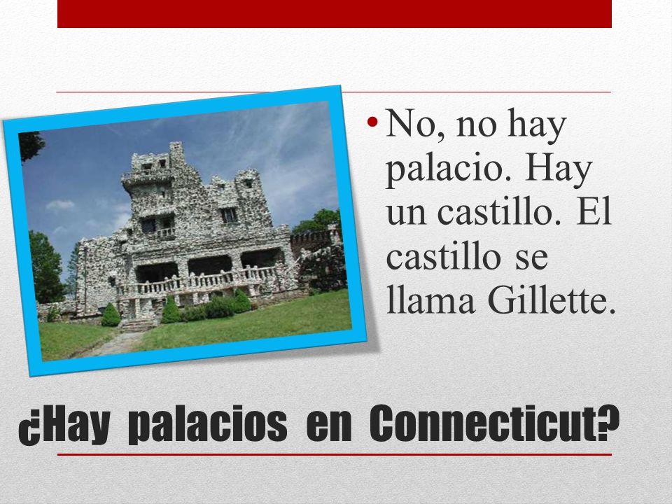 ¿Hay palacios en Connecticut? No, no hay palacio. Hay un castillo. El castillo se llama Gillette.