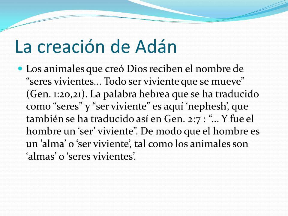 La creación de Adán Los animales que creó Dios reciben el nombre de seres vivientes... Todo ser viviente que se mueve (Gen. 1:20,21). La palabra hebre