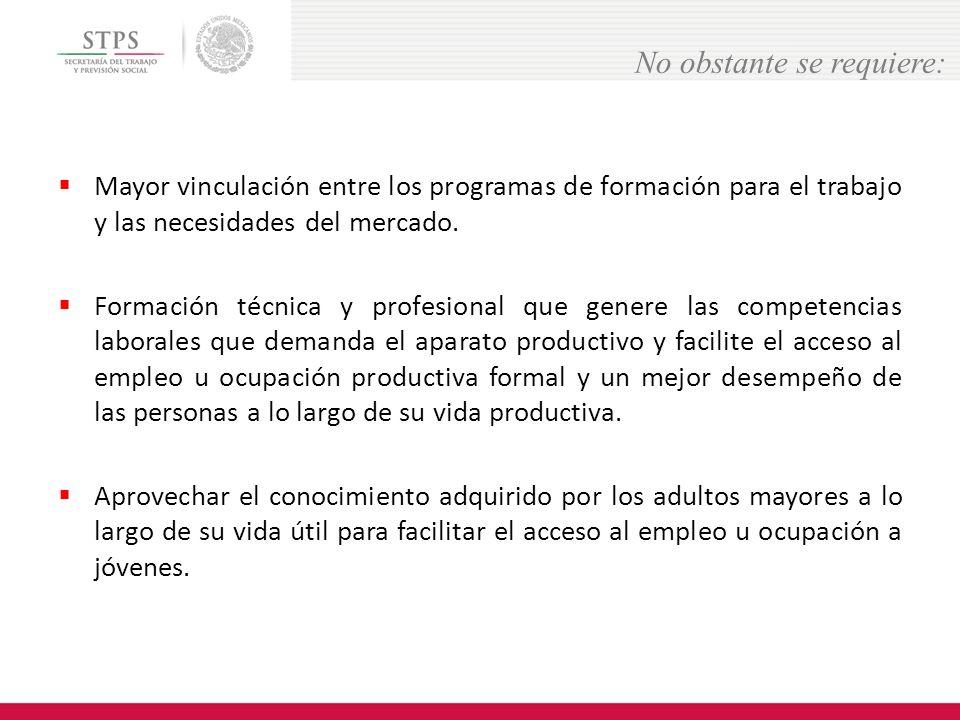 Mayor vinculación entre los programas de formación para el trabajo y las necesidades del mercado.