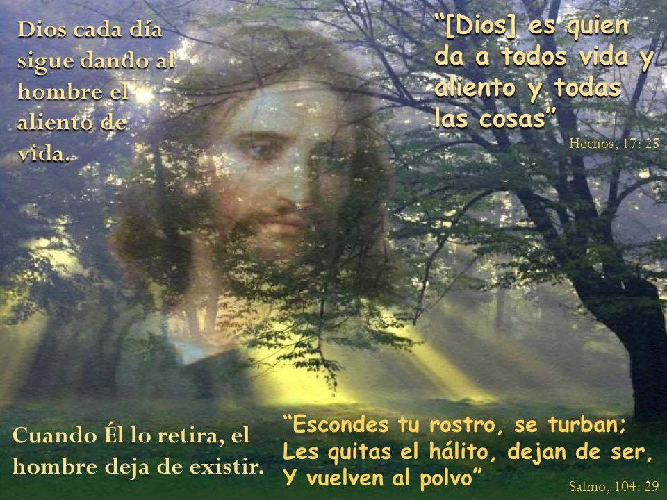 Dios cada día sigue dando al hombre el aliento de vida. [Dios] es quien da a todos vida y aliento y todas las cosas Escondes tu rostro, se turban; Les