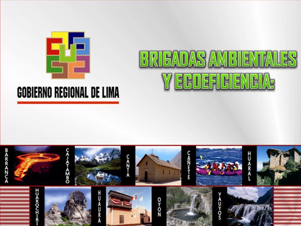 Ecoeficiencia GOBIERNO REGIONAL DE LIMA GERENCIA DE RECURSOS NATURALES & GESTIÓN DE MEDIO AMBIENTE LIZ BONILLA ESPINOZA Gina_1122@hotmail.com GOBIERNO