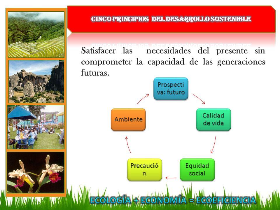 Satisfacer las necesidades del presente sin comprometer la capacidad de las generaciones futuras. Prospecti va: futuro Calidad de vida Equidad social