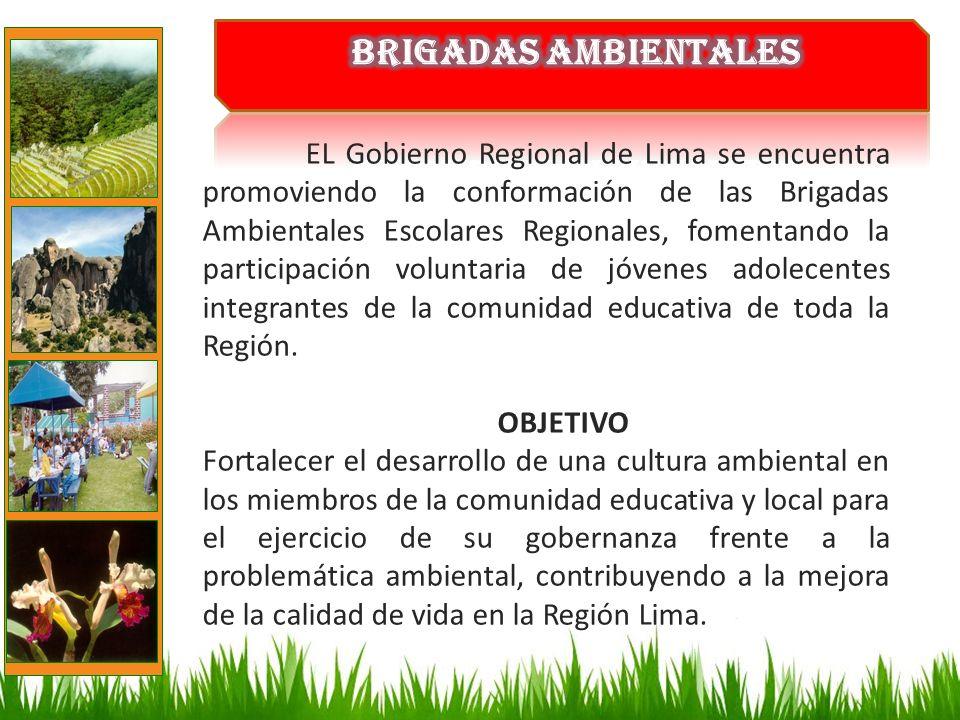 EL Gobierno Regional de Lima se encuentra promoviendo la conformación de las Brigadas Ambientales Escolares Regionales, fomentando la participación vo