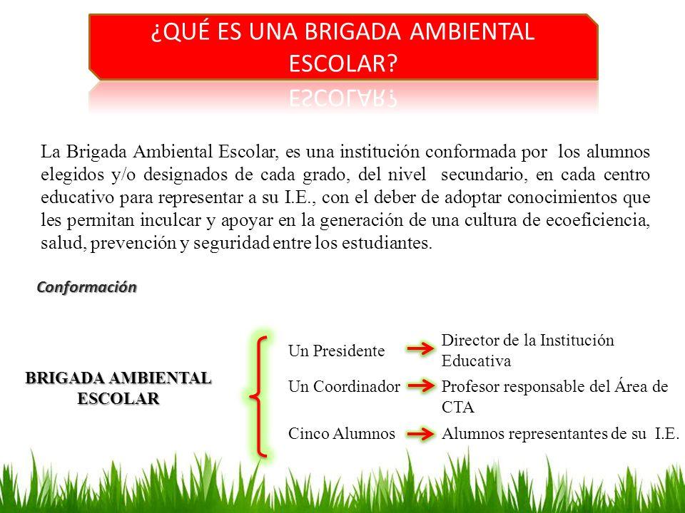 La Brigada Ambiental Escolar, es una institución conformada por los alumnos elegidos y/o designados de cada grado, del nivel secundario, en cada centr