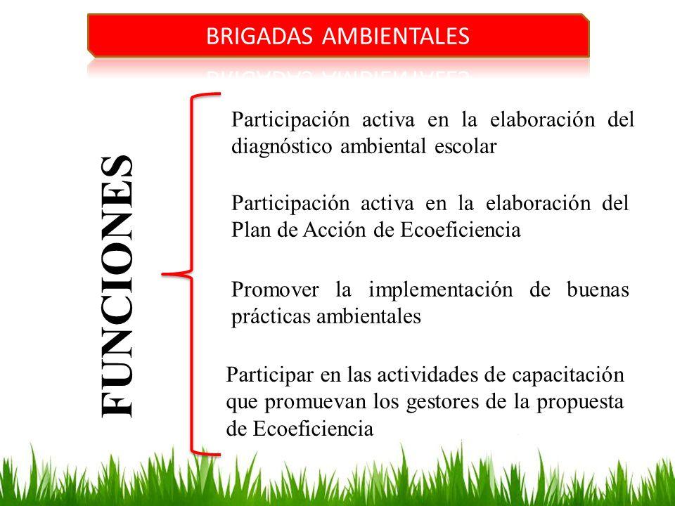 FUNCIONES Participación activa en la elaboración del diagnóstico ambiental escolar Participación activa en la elaboración del Plan de Acción de Ecoefi