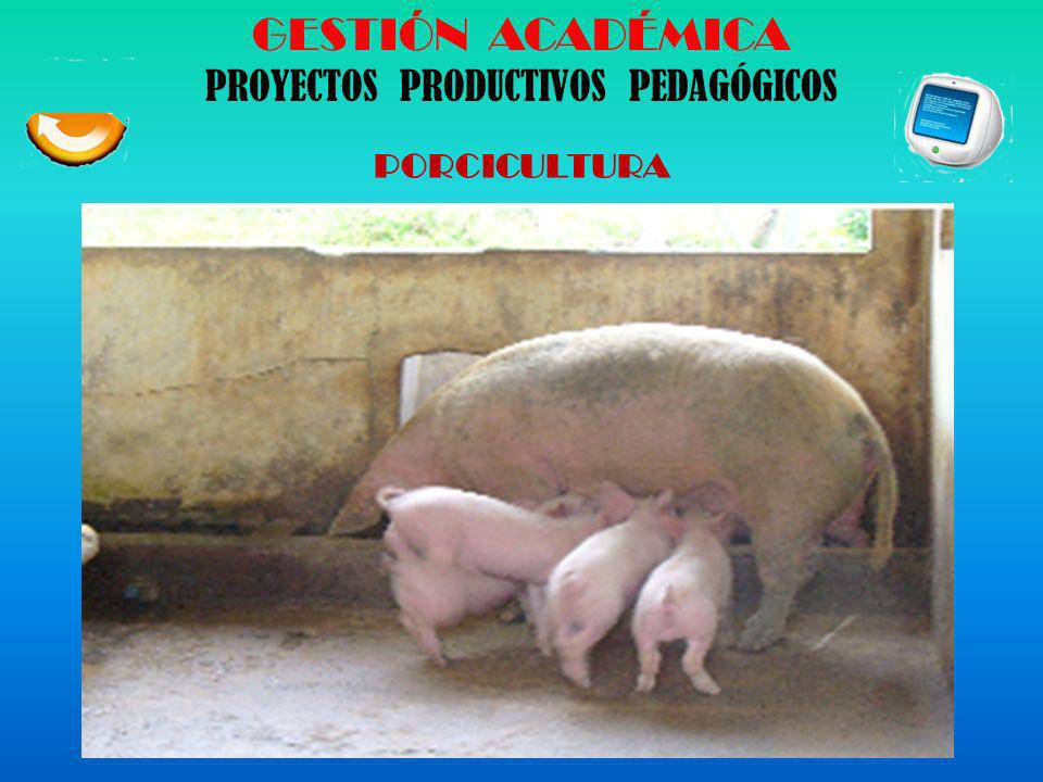 GESTIÓN ACADÉMICA PROYECTOS PRODUCTIVOS PEDAGÓGICOS GANADERÍA