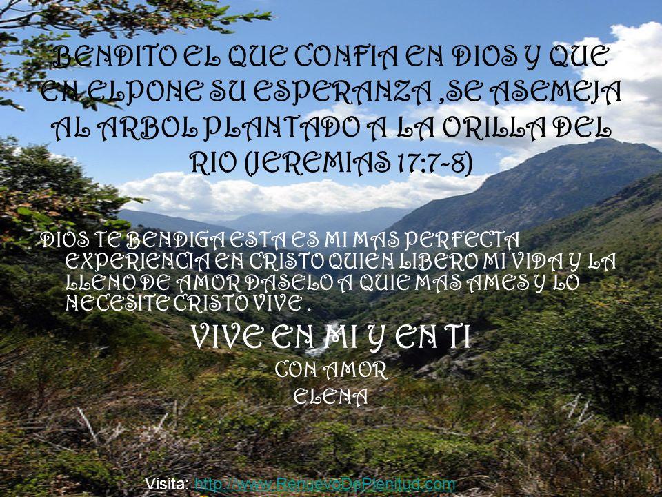 BENDITO EL QUE CONFIA EN DIOS Y QUE EN ELPONE SU ESPERANZA,SE ASEMEJA AL ARBOL PLANTADO A LA ORILLA DEL RIO (JEREMIAS 17:7-8) DIOS TE BENDIGA ESTA ES
