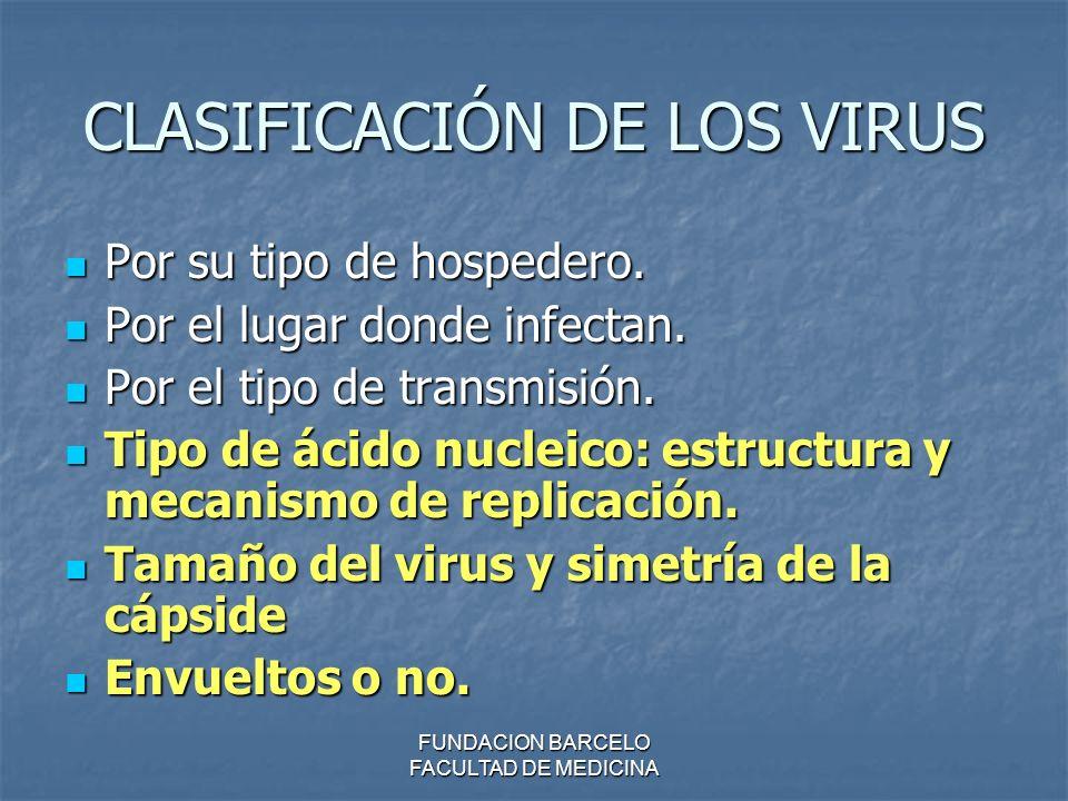 FUNDACION BARCELO FACULTAD DE MEDICINA CLASIFICACIÓN DE LOS VIRUS Por su tipo de hospedero. Por su tipo de hospedero. Por el lugar donde infectan. Por