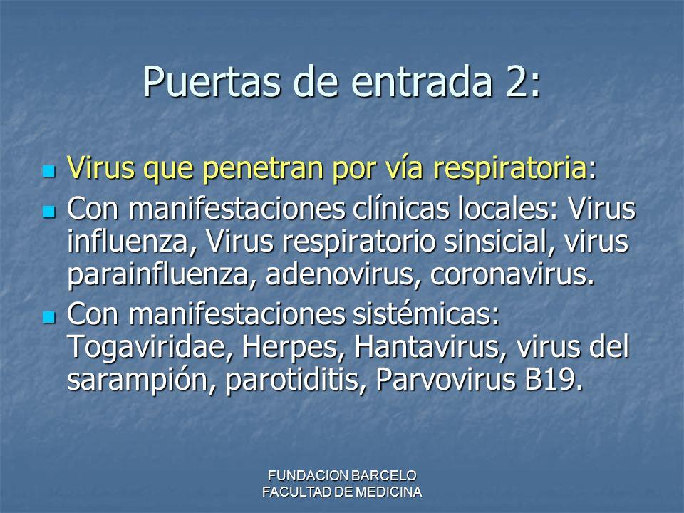 FUNDACION BARCELO FACULTAD DE MEDICINA Puertas de entrada 2: Virus que penetran por vía respiratoria: Virus que penetran por vía respiratoria: Con man