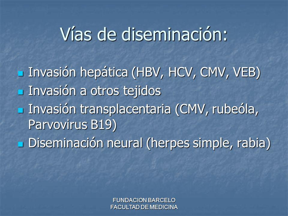 Vías de diseminación: Invasión hepática (HBV, HCV, CMV, VEB) Invasión hepática (HBV, HCV, CMV, VEB) Invasión a otros tejidos Invasión a otros tejidos