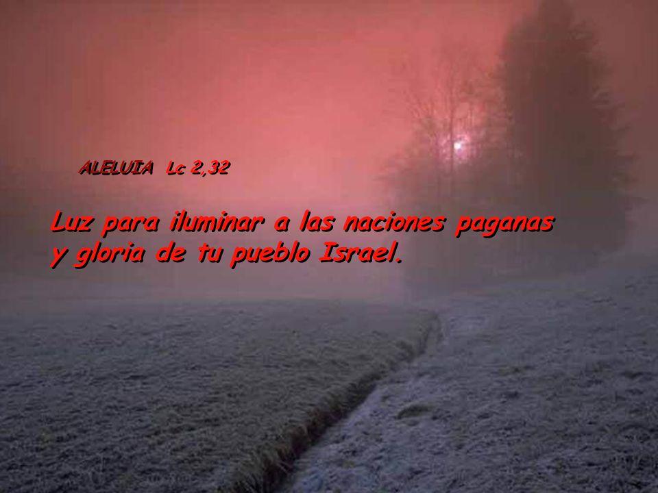 ALELUIA Lc 2,32 Luz para iluminar a las naciones paganas y gloria de tu pueblo Israel.