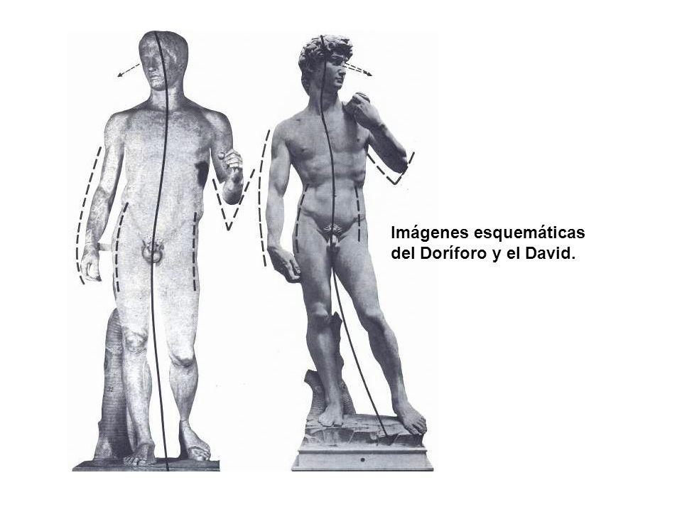 Imágenes esquemáticas del Doríforo y el David.