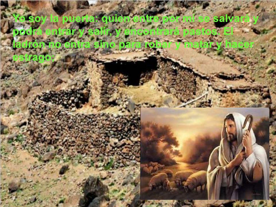 Jesús les puso esta comparación, pero ellos no entendieron de qué les hablaba. Por eso añadió Jesús: Os aseguro que yo soy la puerta de las ovejas. To