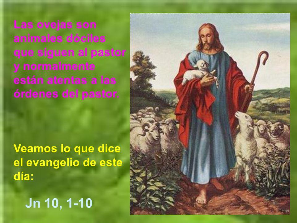Ese pastoreo de Dios se ha hecho realidad encarnada en la persona de Jesús.