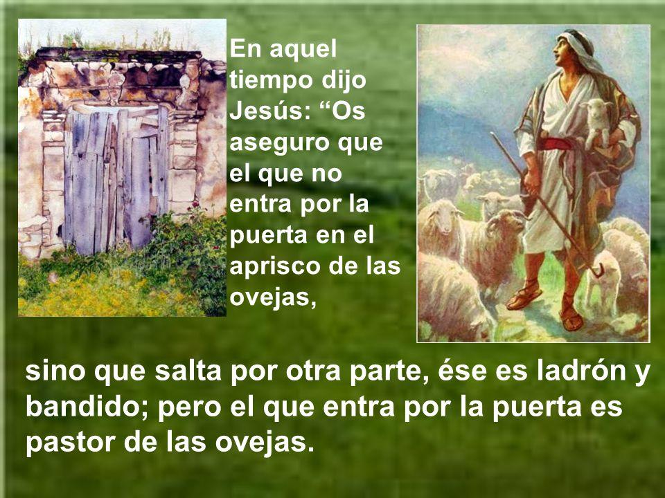 En aquel tiempo dijo Jesús: Os aseguro que el que no entra por la puerta en el aprisco de las ovejas, sino que salta por otra parte, ése es ladrón y bandido; pero el que entra por la puerta es pastor de las ovejas.