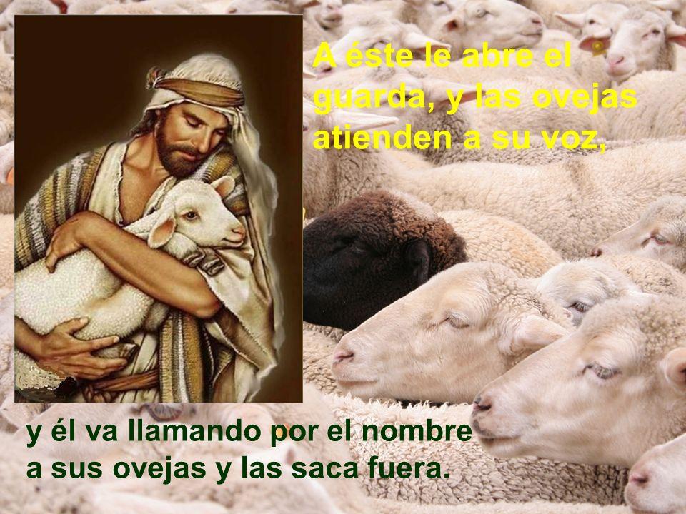 A éste le abre el guarda, y las ovejas atienden a su voz, y él va llamando por el nombre a sus ovejas y las saca fuera.