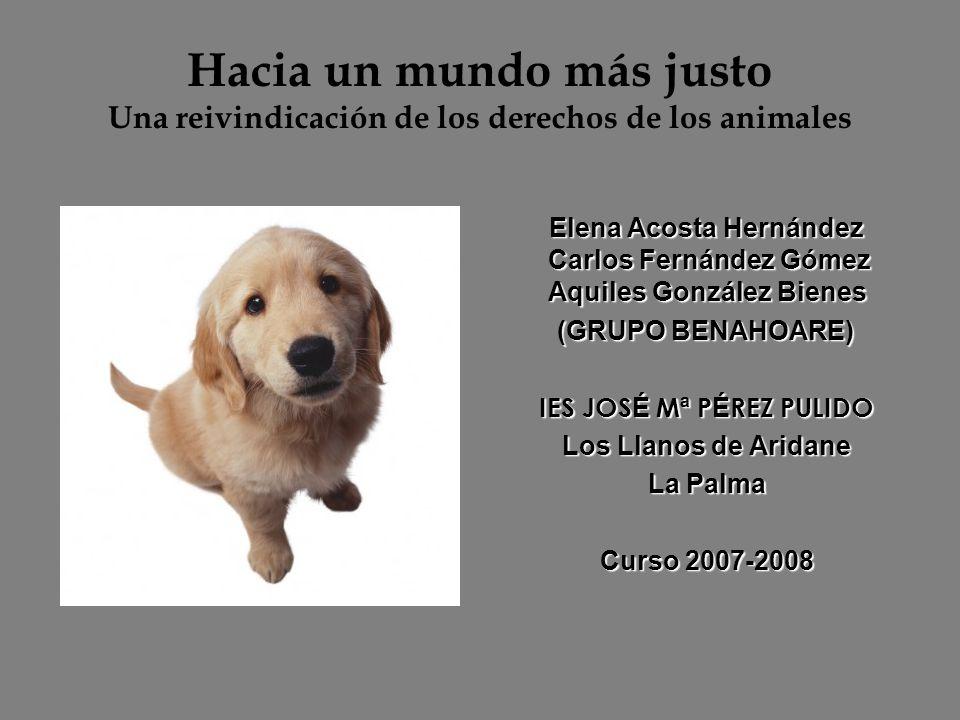 Hacia un mundo más justo Una reivindicación de los derechos de los animales Elena Acosta Hernández Carlos Fernández Gómez Aquiles González Bienes Elen
