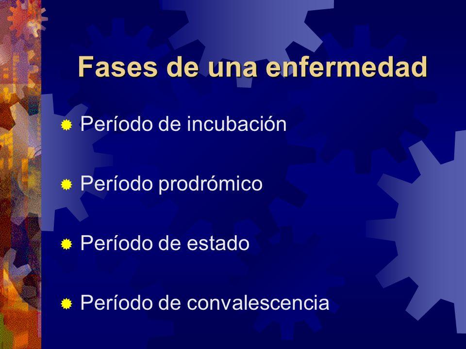 Fases de una enfermedad Período de incubación Período prodrómico Período de estado Período de convalescencia