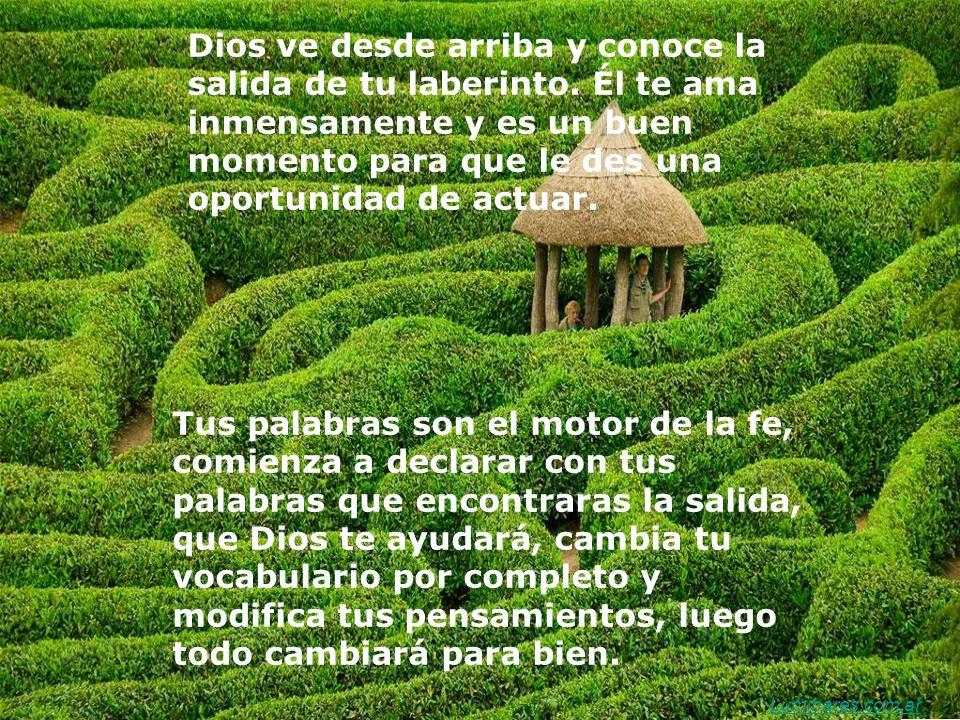 Dios ve desde arriba y conoce la salida de tu laberinto.