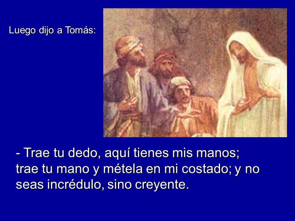 Luego dijo a Tomás: - Trae tu dedo, aquí tienes mis manos; trae tu mano y métela en mi costado; y no seas incrédulo, sino creyente.