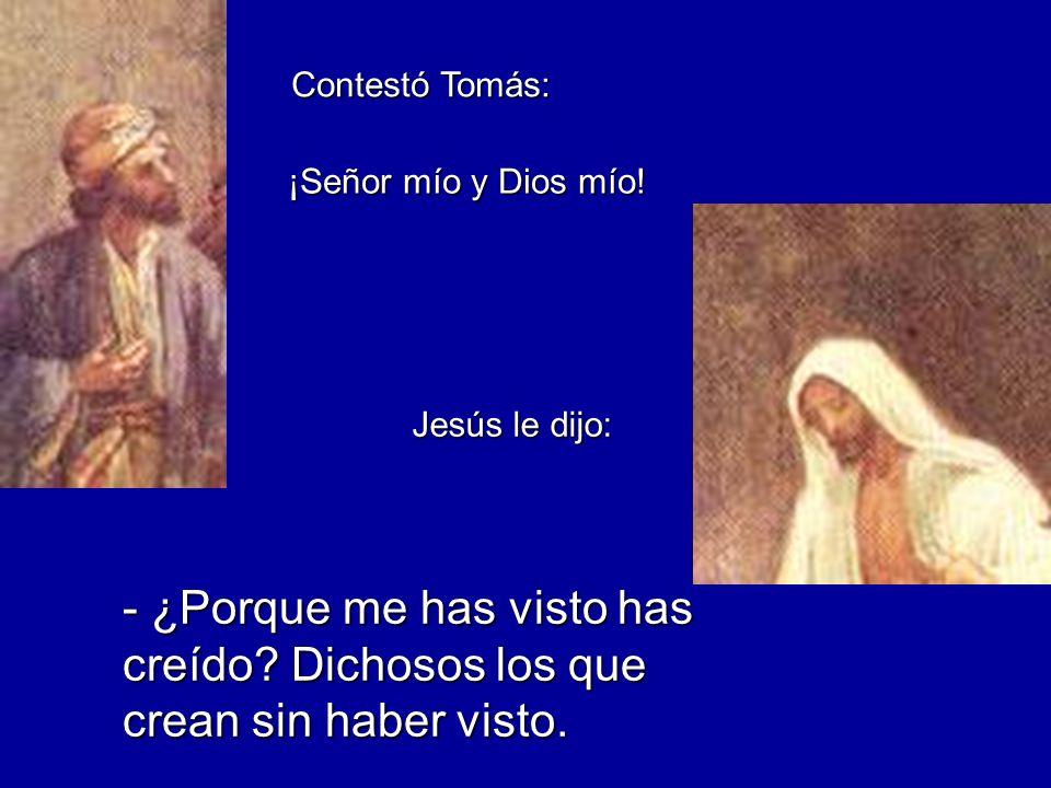 Contestó Tomás: - ¿Porque me has visto has creído? Dichosos los que crean sin haber visto. ¡Señor mío y Dios mío! Jesús le dijo: