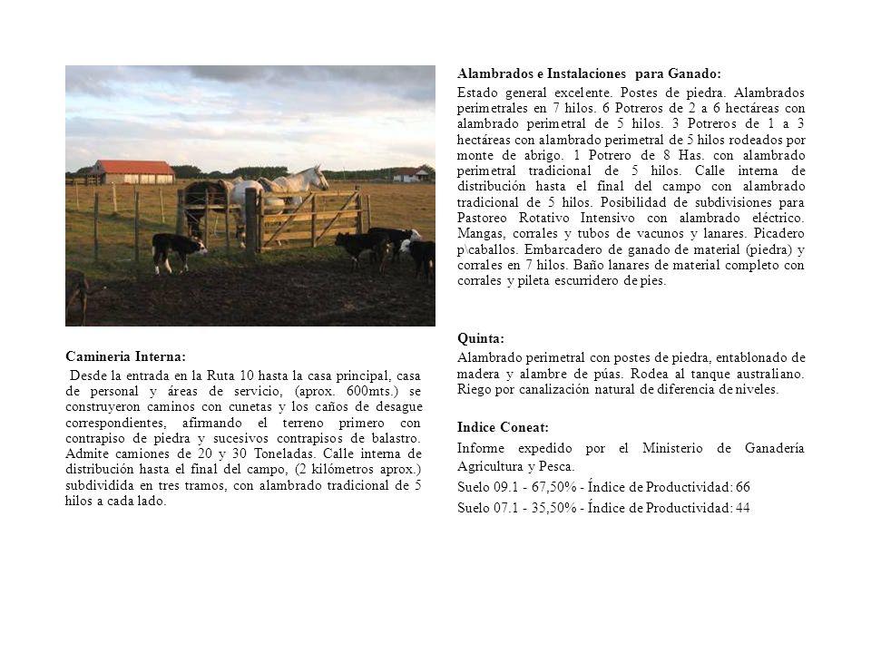 Alambrados e Instalaciones para Ganado: Estado general excelente. Postes de piedra. Alambrados perimetrales en 7 hilos. 6 Potreros de 2 a 6 hectáreas