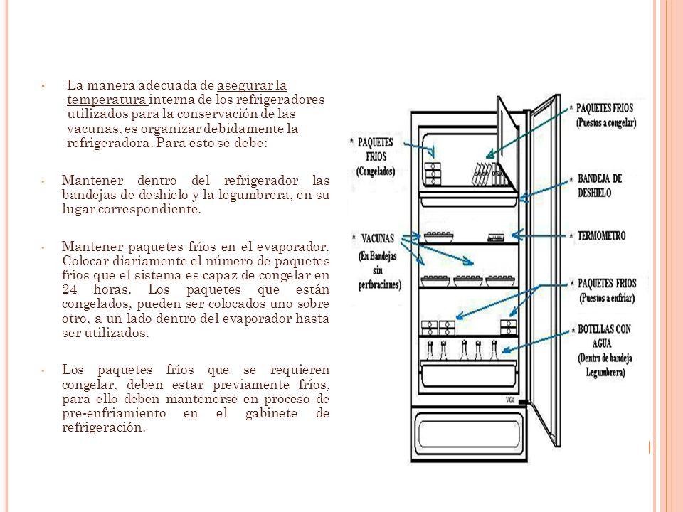 La manera adecuada de asegurar la temperatura interna de los refrigeradores utilizados para la conservación de las vacunas, es organizar debidamente l