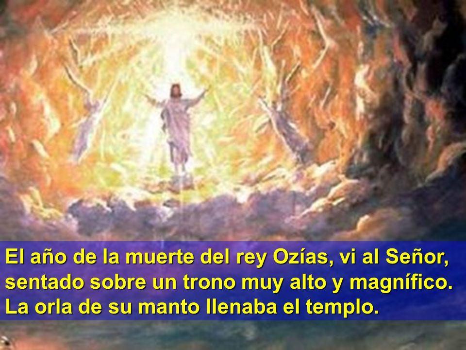 Monición primera lectura. El profeta Isaías tuvo una especial revelación de Dios que le dejó asombrado y aturdido. Sintió la necesidad de proclamar la