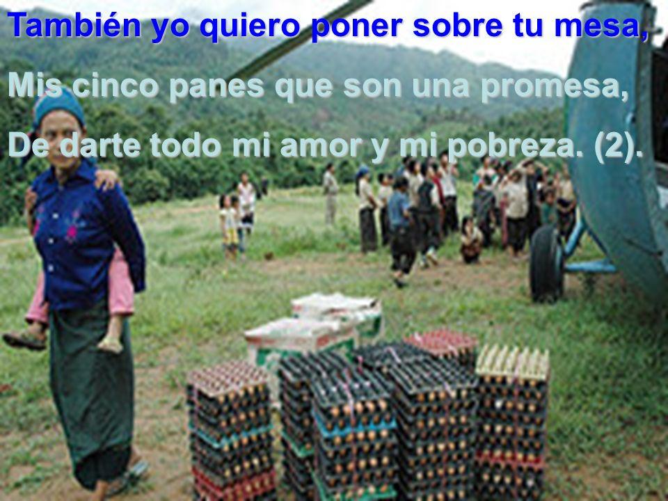 Un niño se te acercó aquella tarde, sus cinco panes te dio, para ayudarte, los dos hicisteis que ya, no hubiera hambre (2).