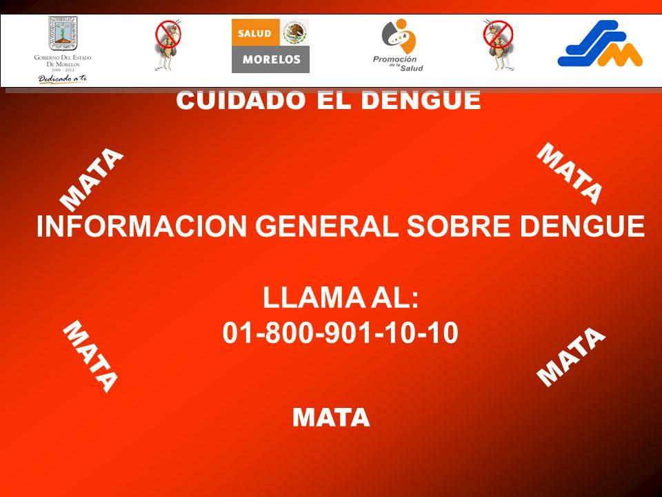CUIDADO EL DENGUE MATA INFORMACION GENERAL SOBRE DENGUE LLAMA AL: 01-800-901-10-10